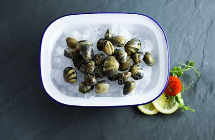 Palourde Clams (450g)