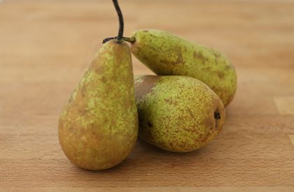 Conference Pears (Single)