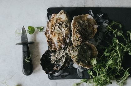 Oysters – Yes you can!